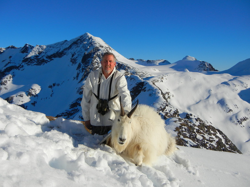 Mountain goat harvest photo 2