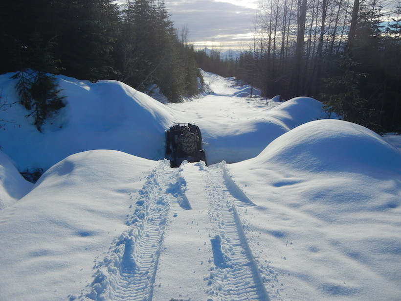 Snow covered logging roads