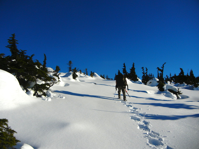 Snowshoeing up the mountain