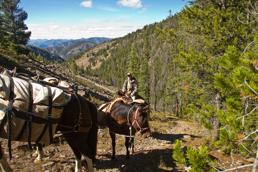 Utilizing horses in the backcountry