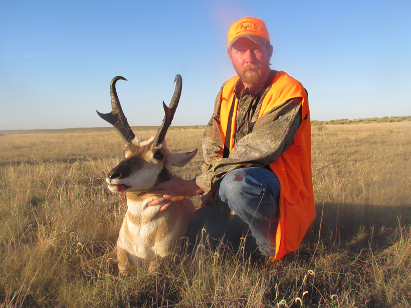 Colorado antelope buck