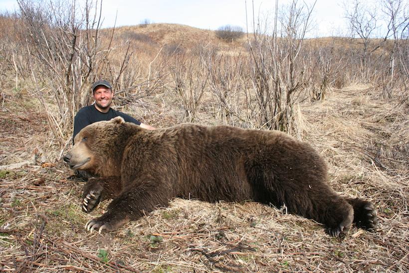 Dave's bears
