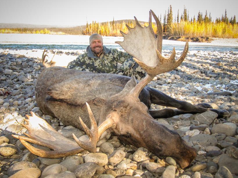 Dave's 2013 Alaska bull moose