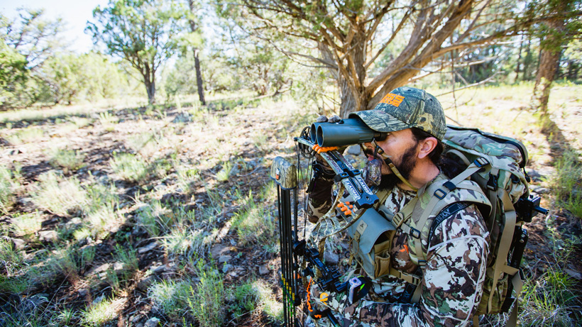 Glassing for deer while bowhunting