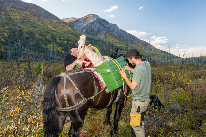 The Best Way To Store Wild Game Meat Gohunt