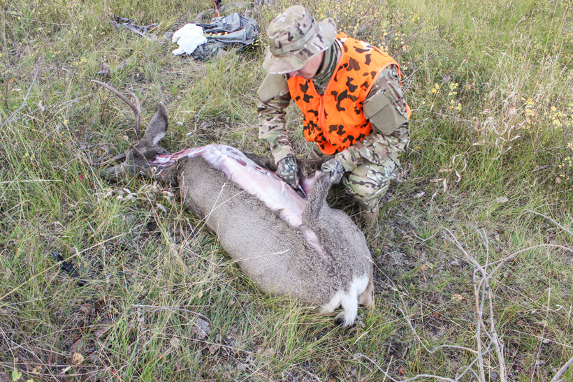 With the tag notched the work began to prepare the deer for packing