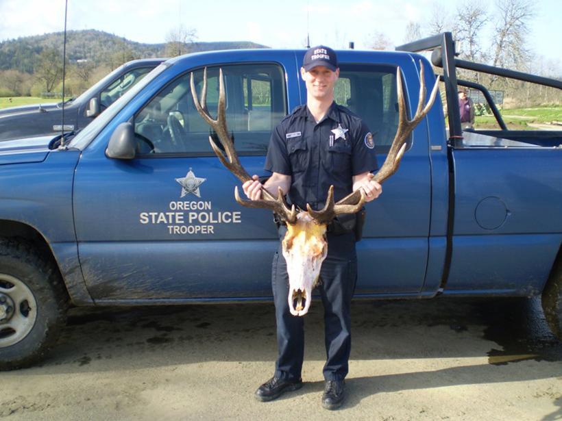 Oregon bull elk poached