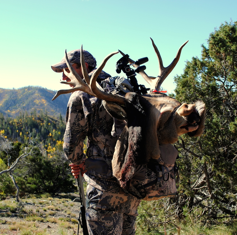 Packing out the buck