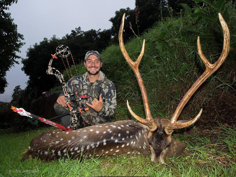 Pedro De Ampuero with a Maui Hawaii Axis deer