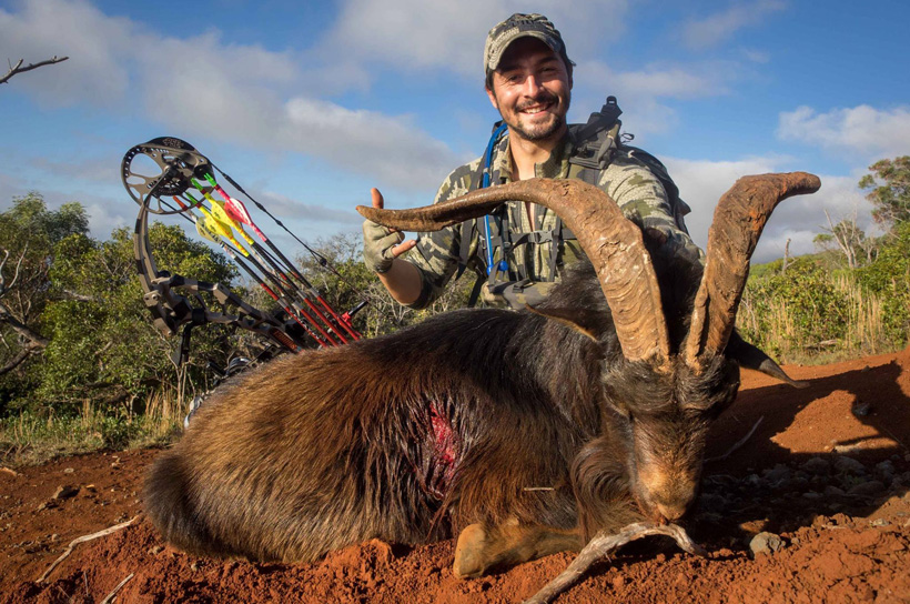 Pedro De Ampuero with a spanish goat from Hawaii