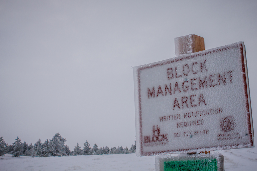 Frozen Block Management sign