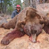A massive black bear that was worth the wait
