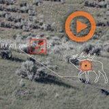 MOA — Custom Rifles vs Line Production Rifles (Trailer)