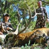 An unknown elk hunting area brings huge success