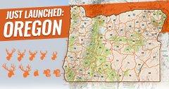 INSIDER update: Oregon is now live